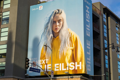 <p>Billie Eilish Pirate Baird O'Connell<span></span></p>